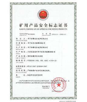 煤安证FTFSS600X10