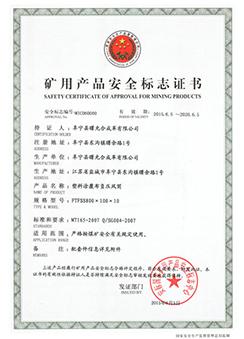 煤安证FTFSS800X10