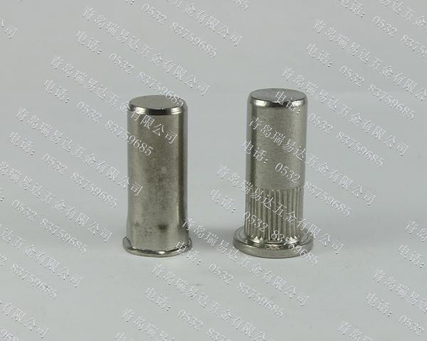 304不銹鋼盲孔拉鉚螺母
